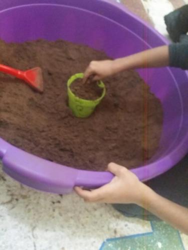 Galerie_Enfants_Activites_Plante_3
